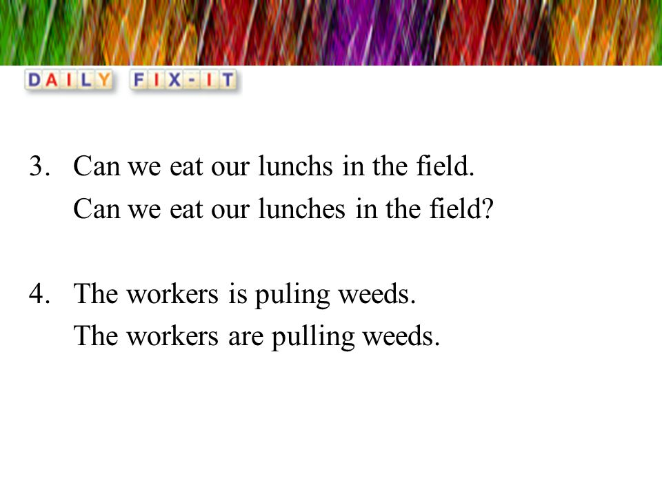 Can we eat our lunchs in the field.