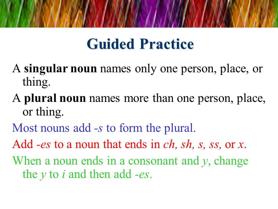 Guided Practice A singular noun names only one person, place, or thing. A plural noun names more than one person, place, or thing.