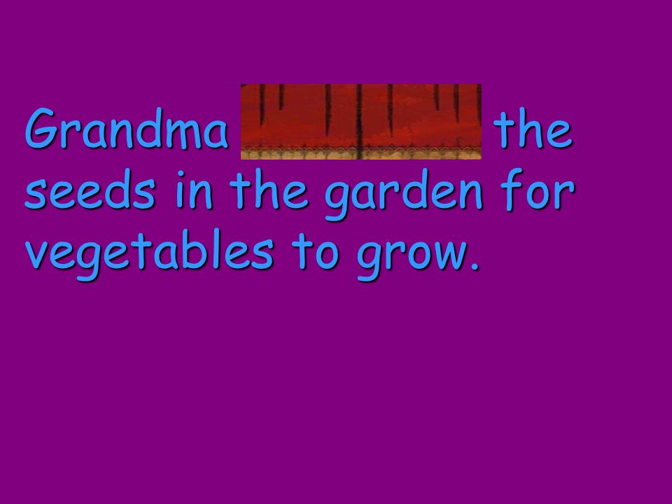 Grandma scattered the seeds in the garden for vegetables to grow.
