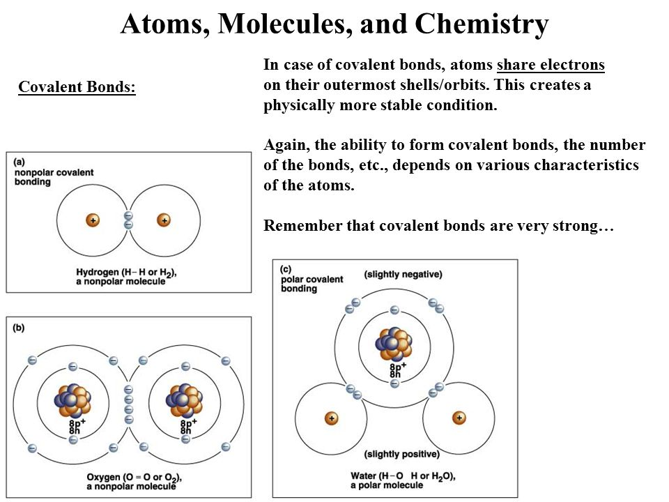 The characteristics of the molecules of water in chemistry
