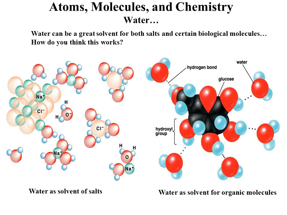 the characteristics of the molecules of water in chemistry Water molecules are attracted to each other, creating hydrogen bonds these strong bonds determine almost every physical property of water and many of its chemical.