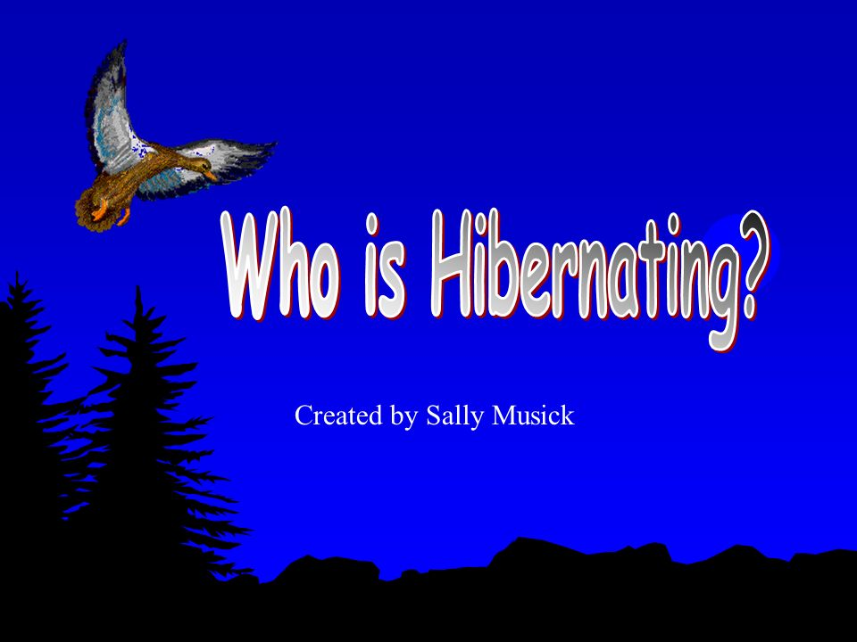 Who is Hibernating Created by Sally Musick