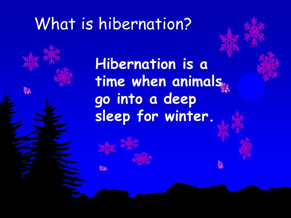 What is hibernation Hibernation is a time when animals go into a deep sleep for winter.