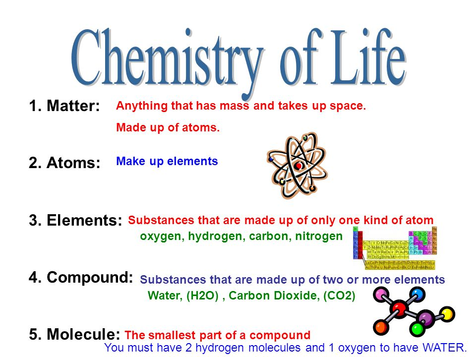 CHAPTER 2 CHEMISTRY OF LIFE. - ppt video online download