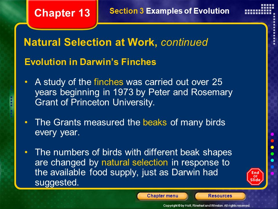 Chapter Table Of Contents Ppt Video Online Download - 23 examples natural selection work
