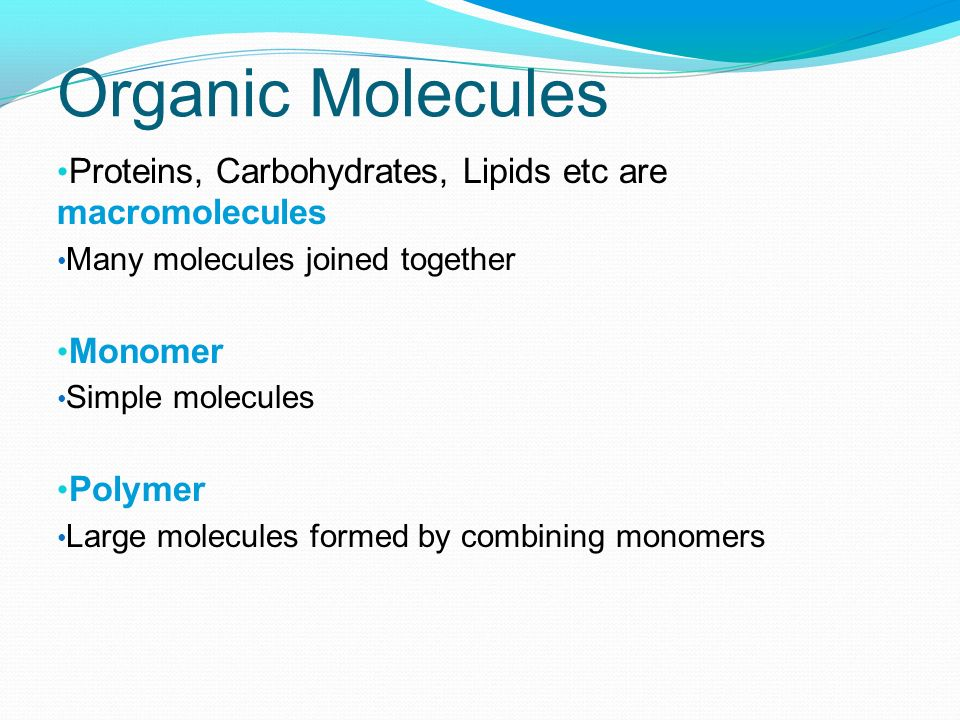 Organic Molecules Proteins, Carbohydrates, Lipids etc are macromolecules. Many molecules joined together.