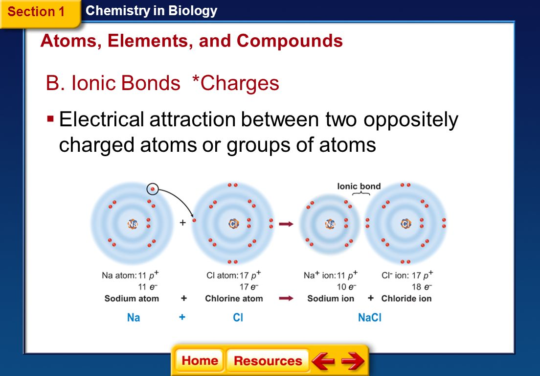 ch 3 atoms and elements 1 Chapter 3 elements, atoms, ions, and the periodic table the periodic law and the periodic table in the early 1800's many elements had been discovered and found to.