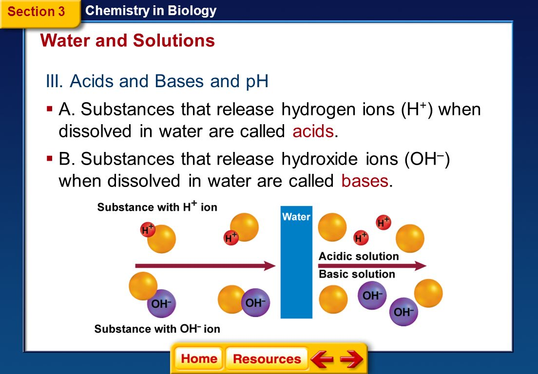 chemistry in biology 23 chemistry of water a first cells evolved in water 1 all living things are 7090% water 2 because water is a polar molecule, water molecules are hydrogen bonded to each other 3 with hydrogen bonding, water is liquid between 0o c and 100 c which is critical for life b properties of water 1 the temperature of liquid water rises and falls.