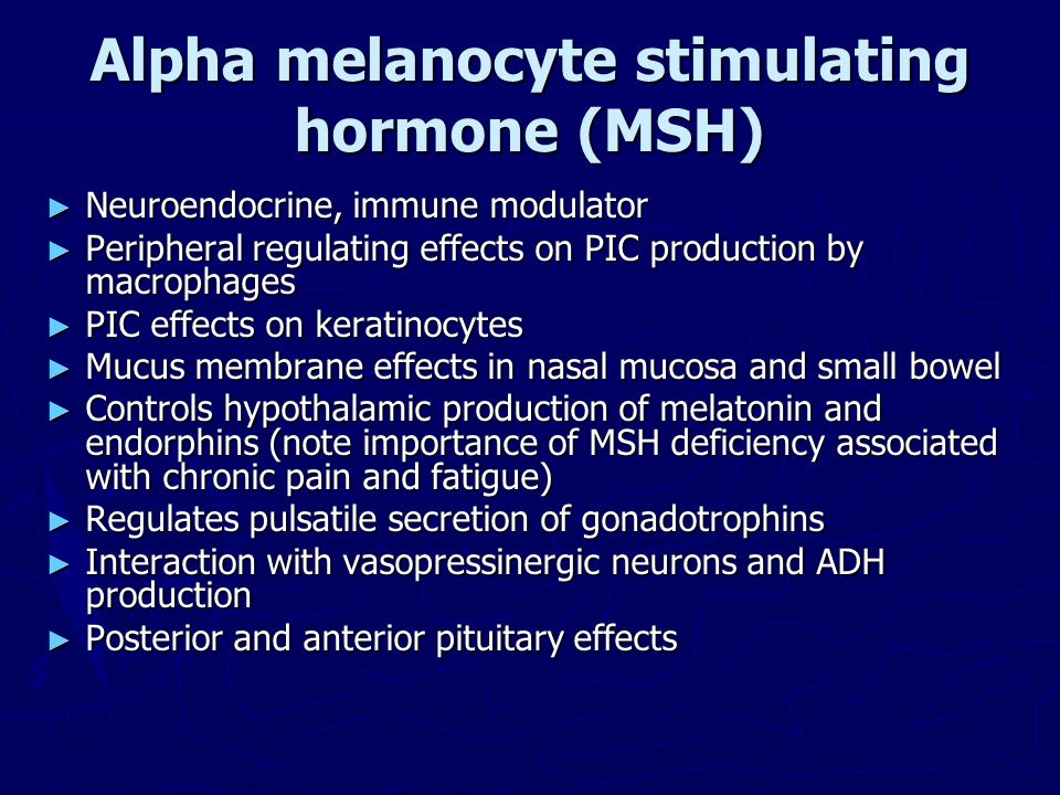 Alpha melanocyte stimulating hormone (MSH)