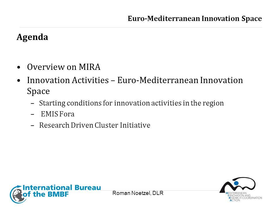 Innovation Activities – Euro-Mediterranean Innovation Space