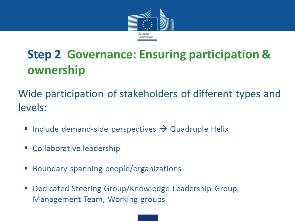 Step 2 Governance: Ensuring participation & ownership