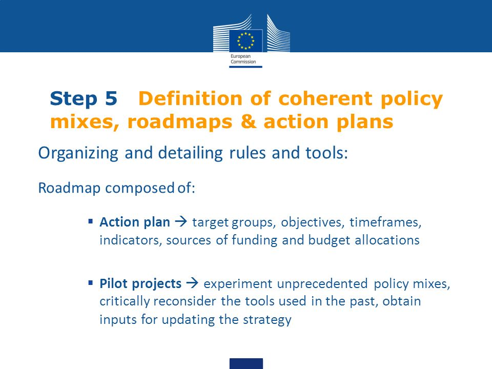 Step 5 Definition of coherent policy mixes, roadmaps & action plans