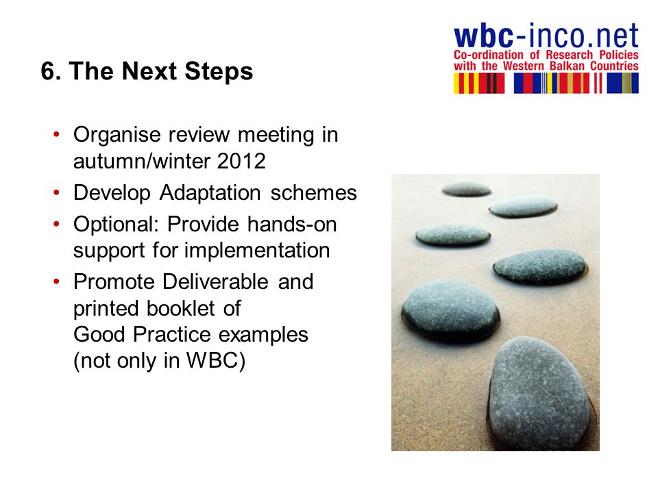 6. The Next Steps Organise review meeting in autumn/winter 2012
