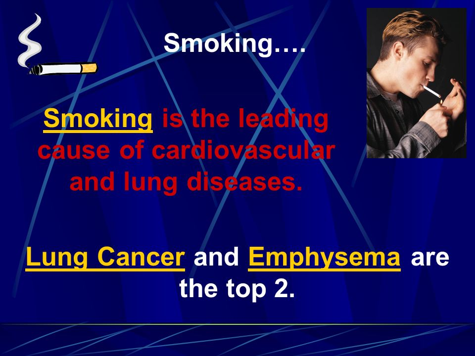 Smoking is the leading cause of cardiovascular and lung diseases.