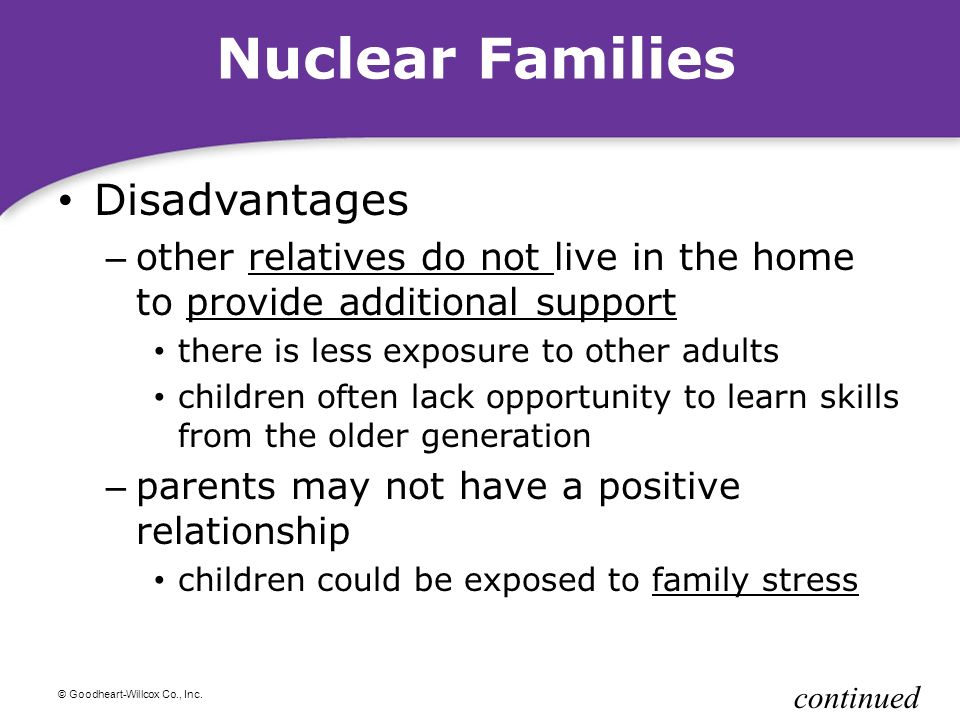 Essay On Nuclear Family Advantages A Collection Of Essays Online