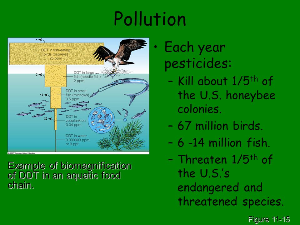 Pollution Each year pesticides: