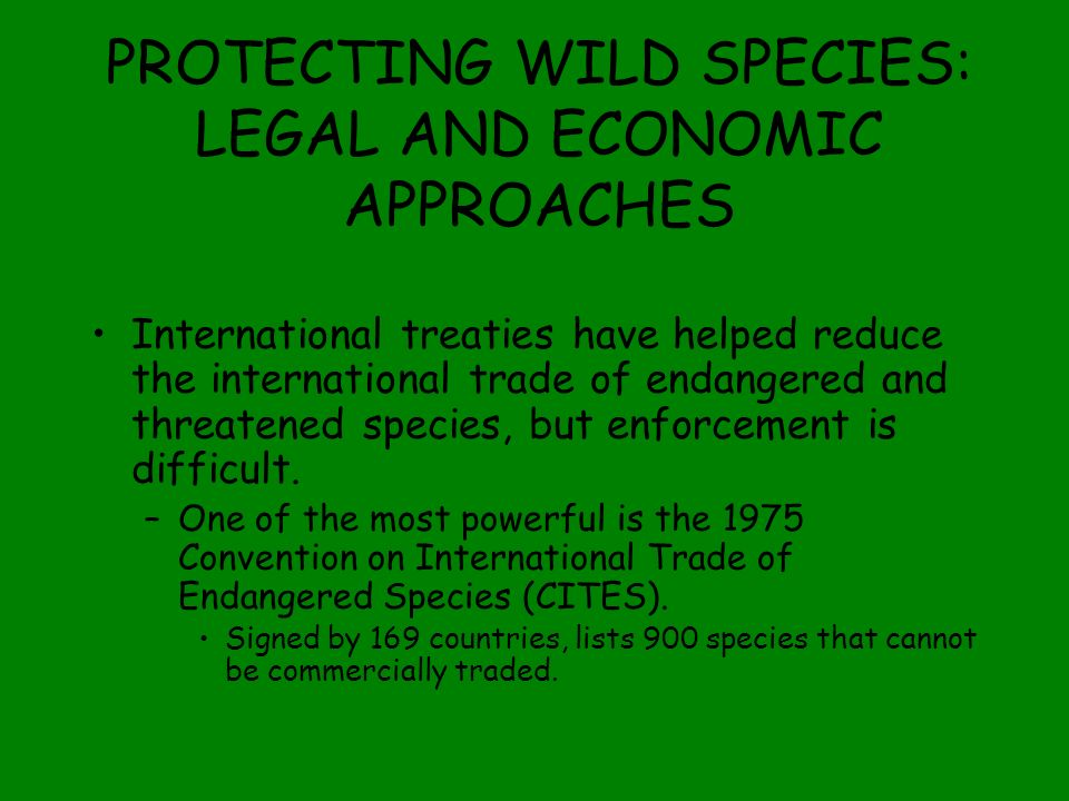 PROTECTING WILD SPECIES: LEGAL AND ECONOMIC APPROACHES