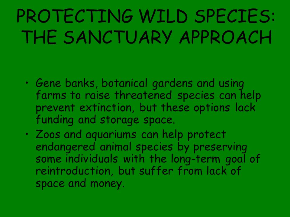PROTECTING WILD SPECIES: THE SANCTUARY APPROACH