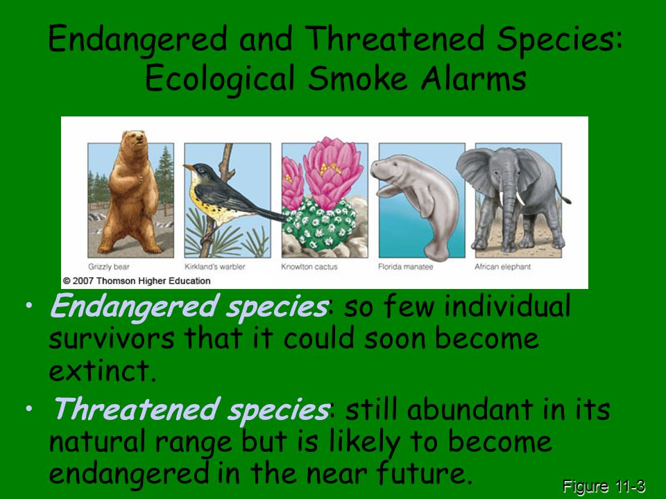 Endangered and Threatened Species: Ecological Smoke Alarms