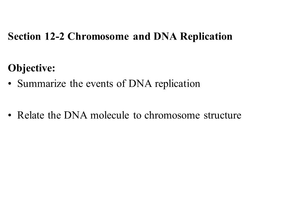 chapter 12 dna structure and replication Dna replication eukaryotic chromosome structure 12-2 chromosomes and dna replication the principal enzyme involved in dna replication is dna polymerase biology chapter 16 section 2 evolution a miller levine dragonfly book.