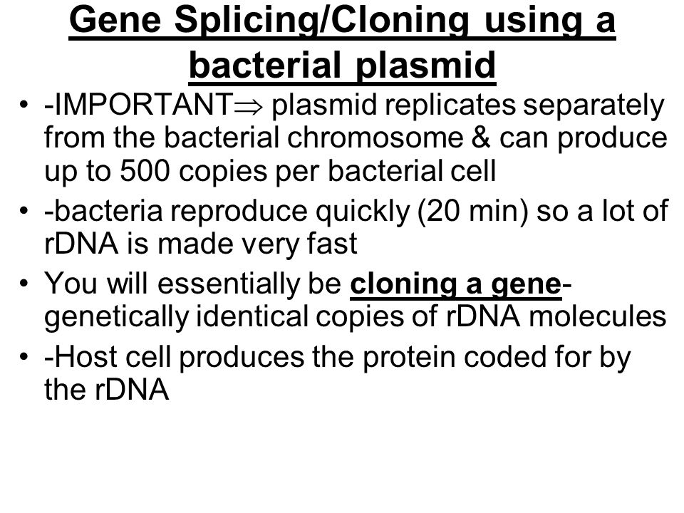 Gene Splicing/Cloning using a bacterial plasmid