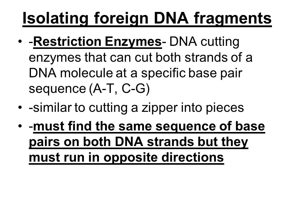 Isolating foreign DNA fragments