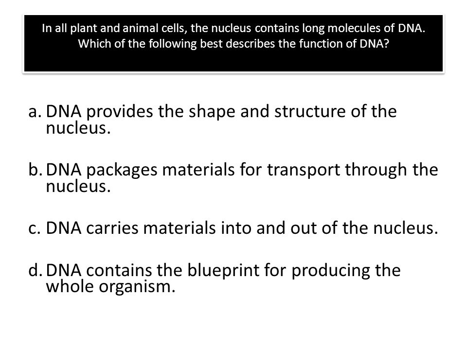 Dna The Molecule Of Heredity Ppt Video Online Download