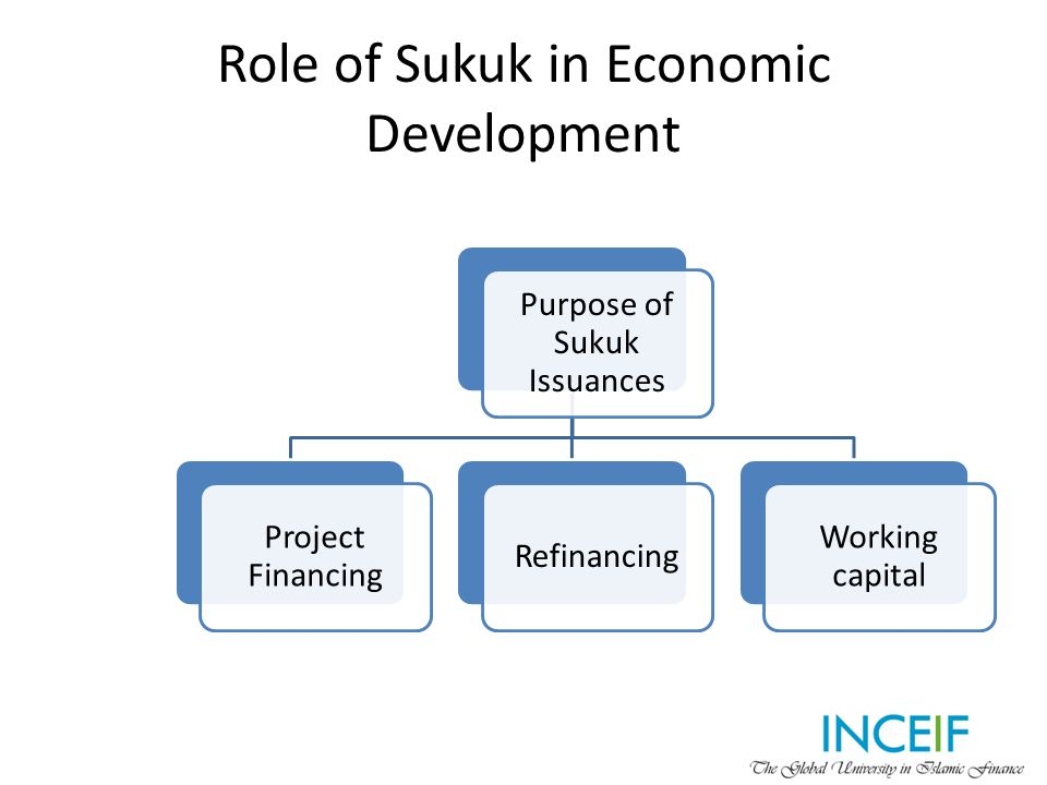 role of islam in economic develpoment In general, work by the world bank and other multilateral development banks on good governance addresses economic institutions and public sector management,.
