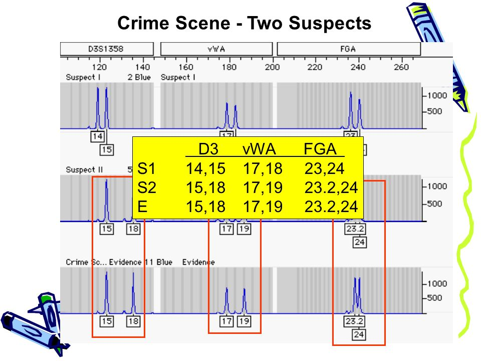 crime scene profiling essay Crime scene profiling is distinguished from psychological profiling and offender profiling, and the profiling process is described a review of the literature on offender types indicates that it may be possible to generalize from various behavioral aspects of a crime scene to some characteristics of.