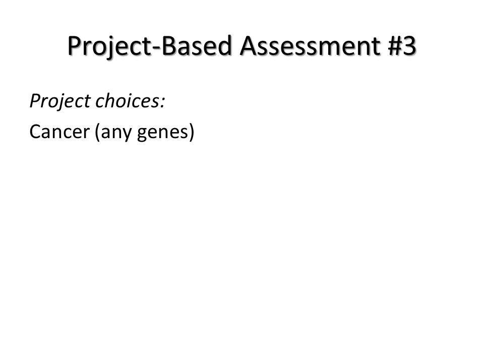 Project-Based Assessment #3