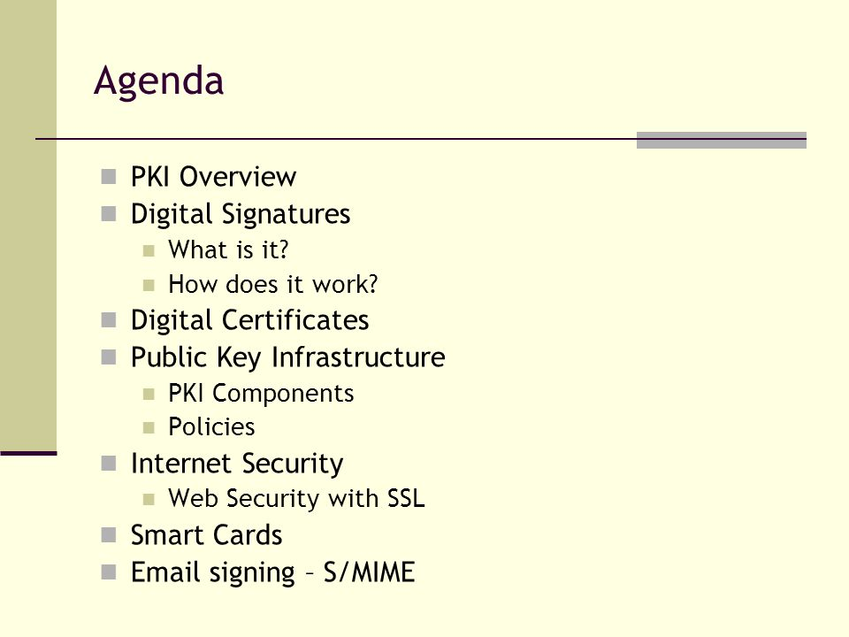 Agenda PKI Overview Digital Signatures Digital Certificates