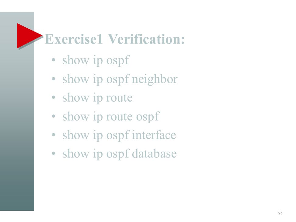 Exercise1 Verification: