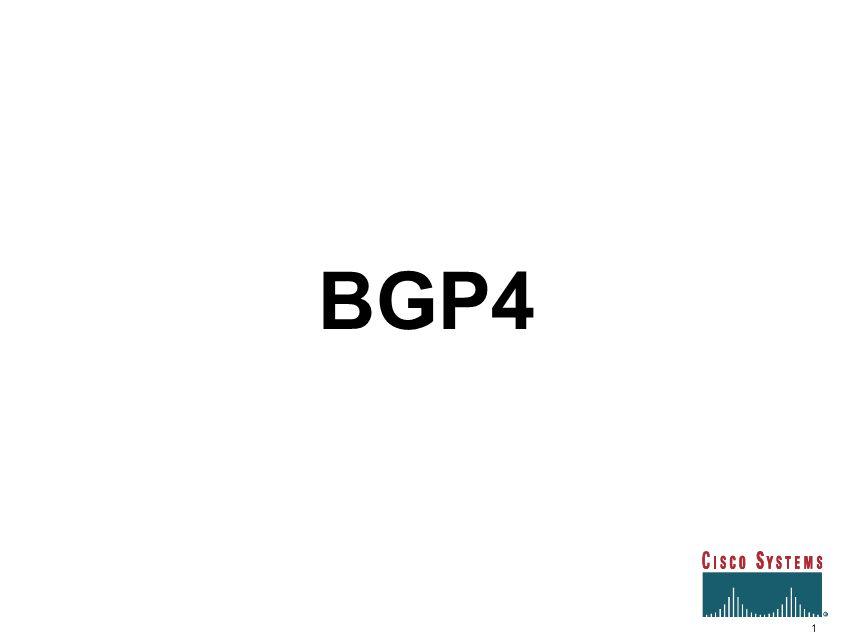 BGP4 1 1