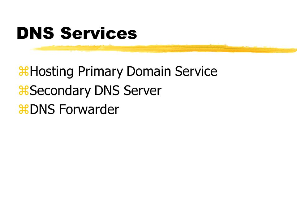 DNS Services Hosting Primary Domain Service Secondary DNS Server