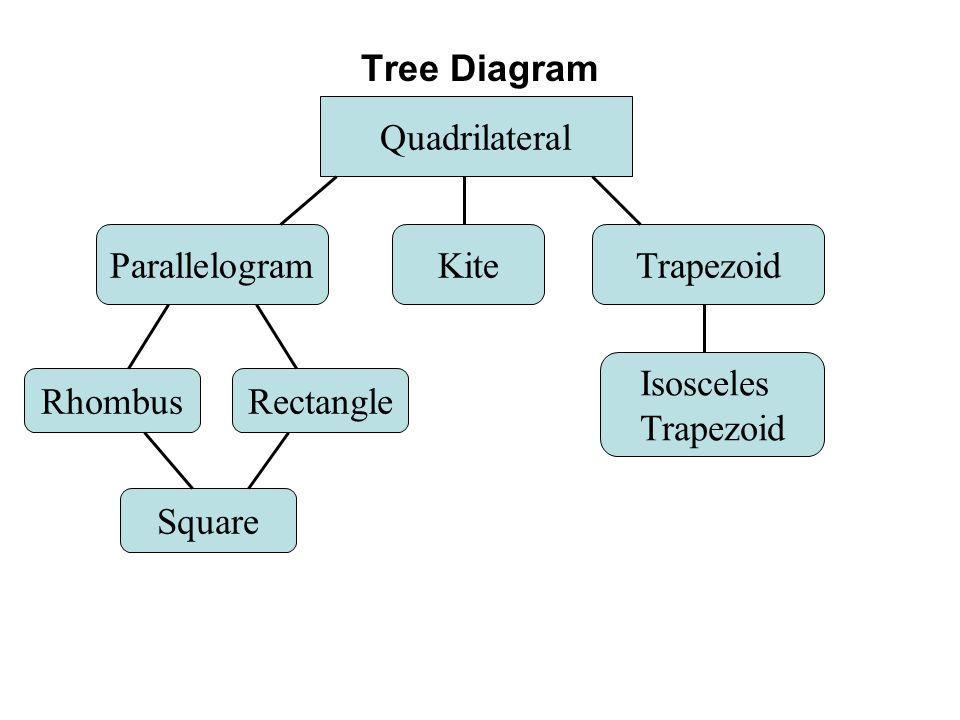 Attention teachers the main focus of section 7 should be proving 7 tree diagram quadrilateral ccuart Gallery