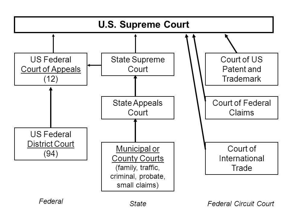 U.S. Supreme Court US Federal Court of Appeals (12)