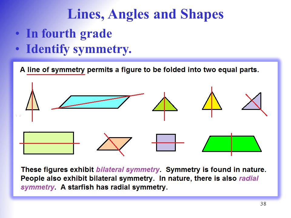 Lines And Shapes : Emse math and science in education ppt video online