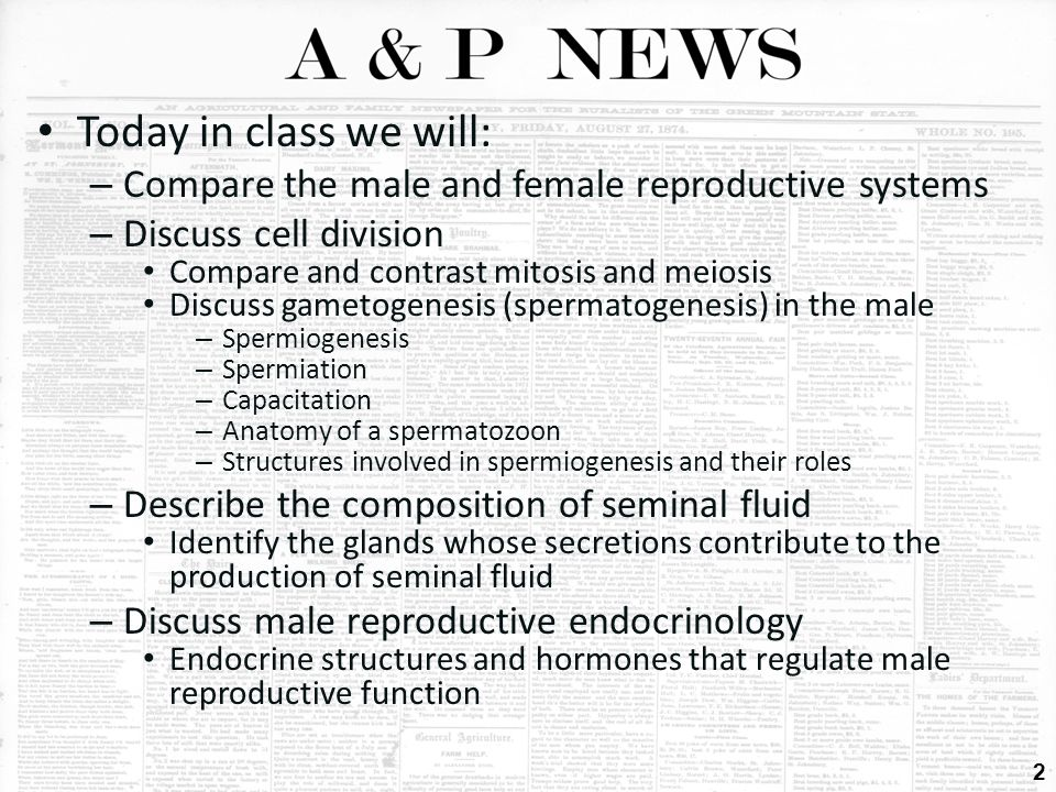 """compare and contrast male and female The following is a list of 50 of these differencesperhaps if we're aware of them   (""""male and female differences in nonconscious mimicry: a."""