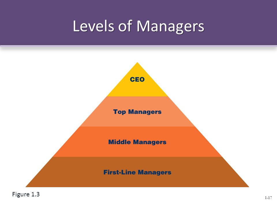 Levels of Managers Figure 1.3