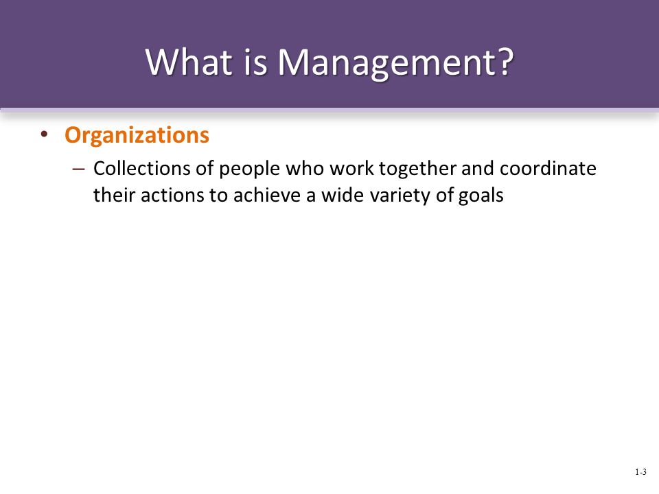 What is Management Organizations