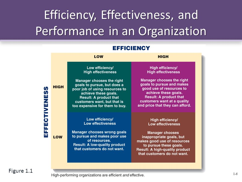 Efficiency, Effectiveness, and Performance in an Organization