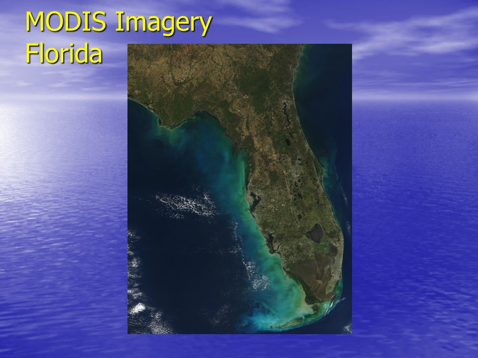 MODIS Imagery Florida