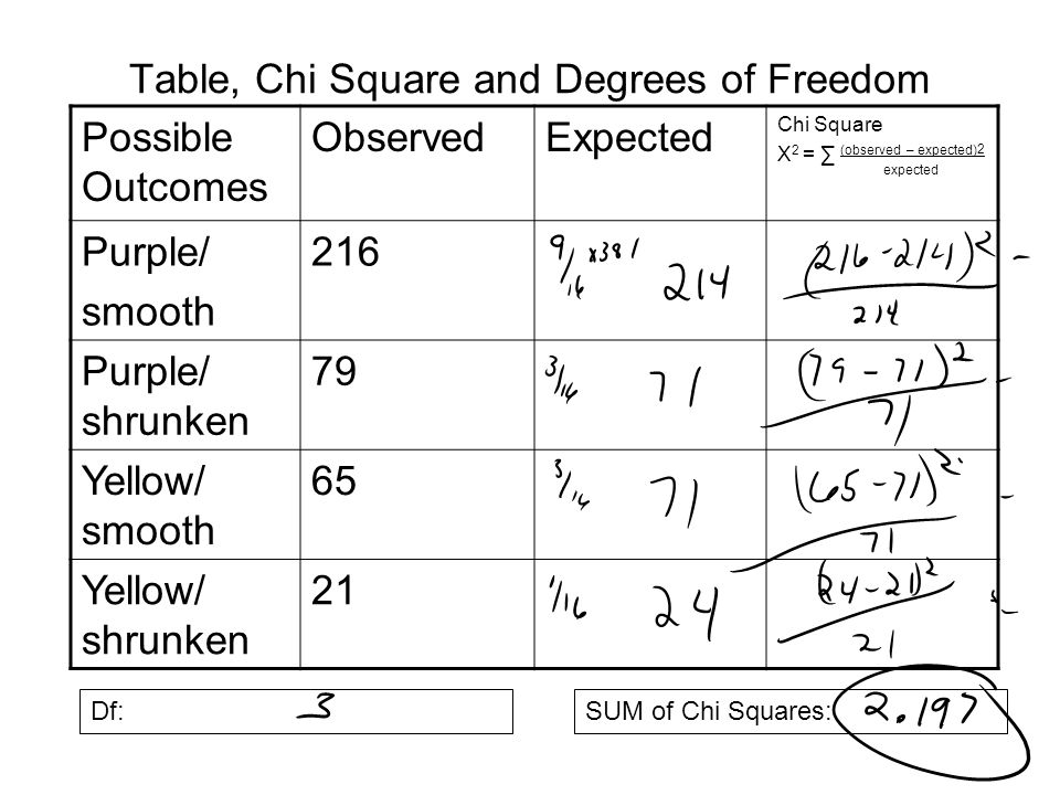 Chi square ppt download for Chi square table 99 degrees of freedom