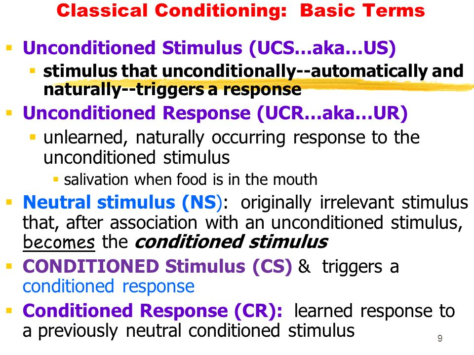 Classical Conditioning and Ice Cream Truck Essay