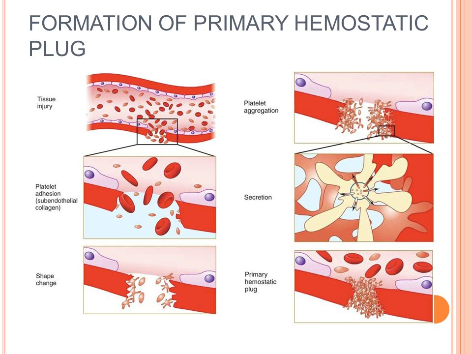 Platelets are key players in hemostasis and thrombosis. At the ...