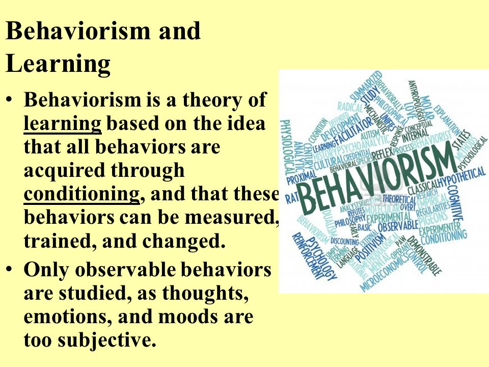Presentation of behaviorism and social learning essay