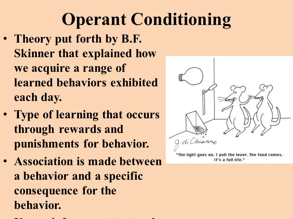 the theory of operant conditioning