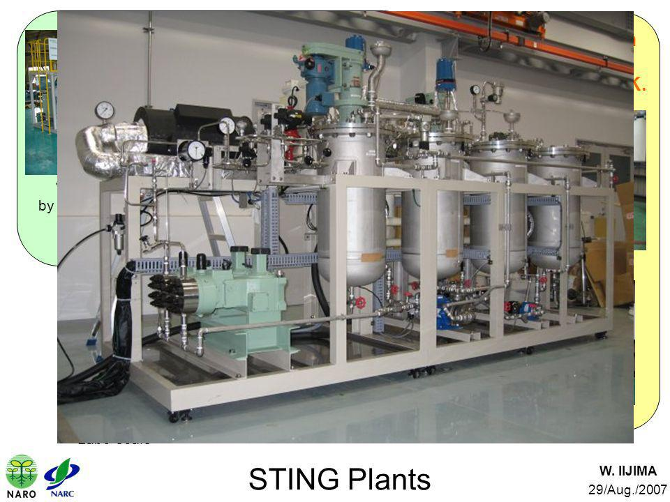 Verification Test Plant