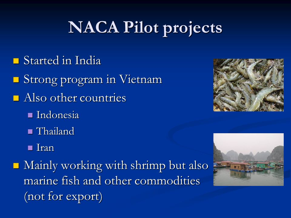 NACA Pilot projects Started in India Strong program in Vietnam