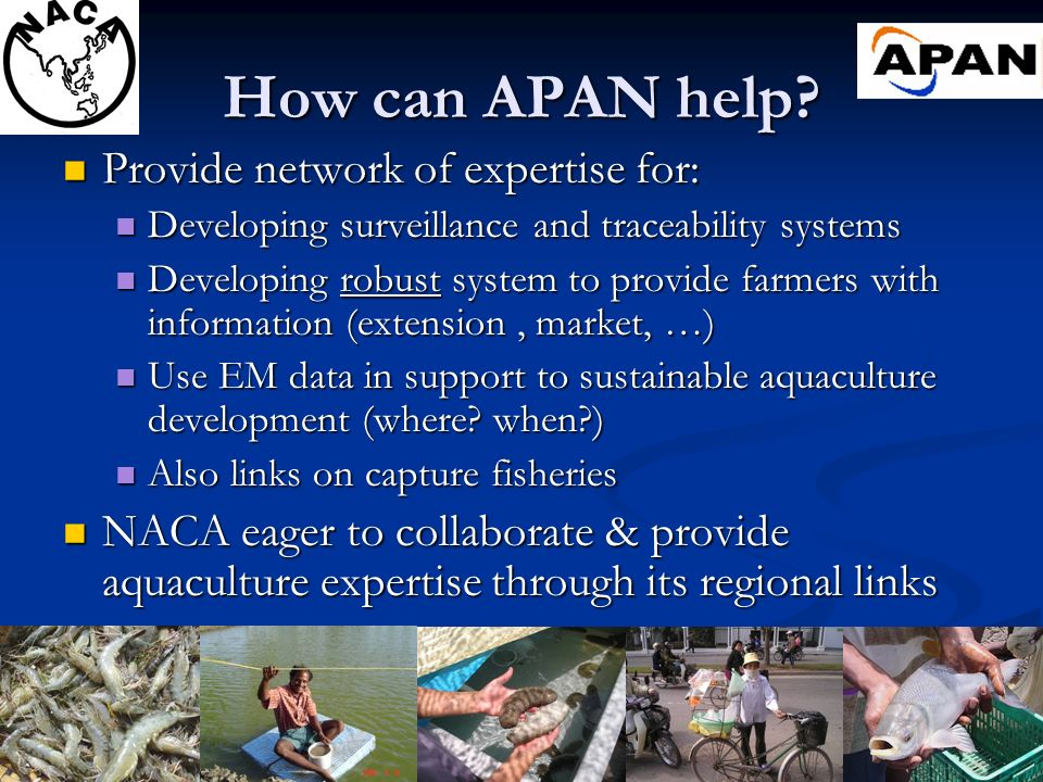 How can APAN help Provide network of expertise for: